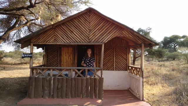 Cabin safari lodging