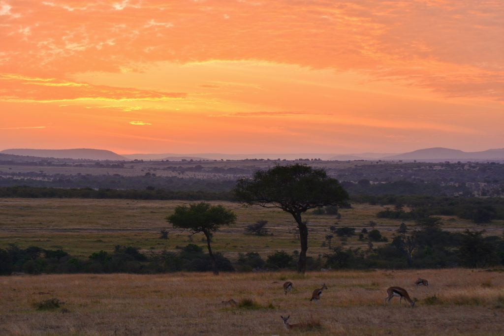 KENIA-TANZANIA SELECTIE (53)