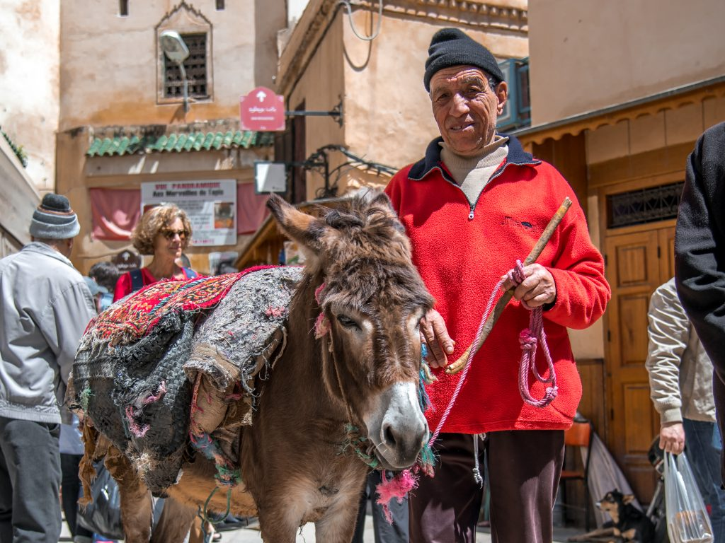 local in fez Morocco